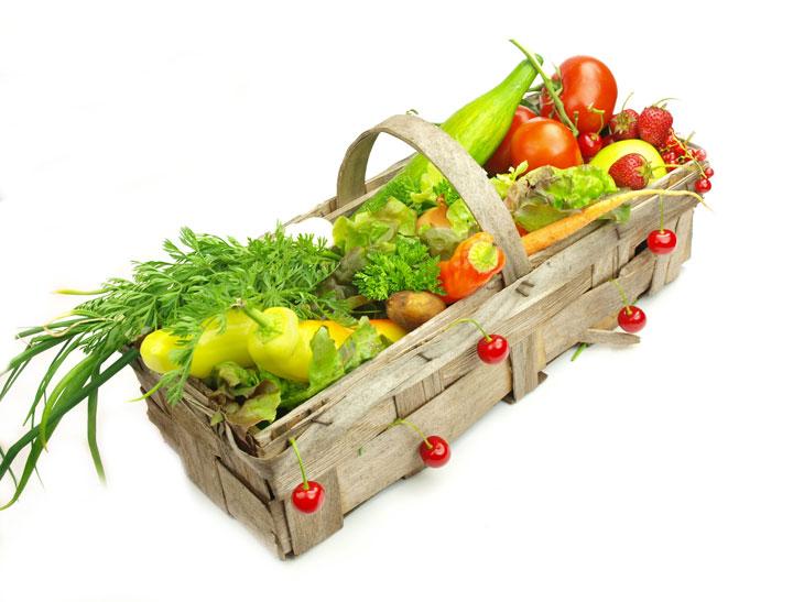 Protein Vegan Diet